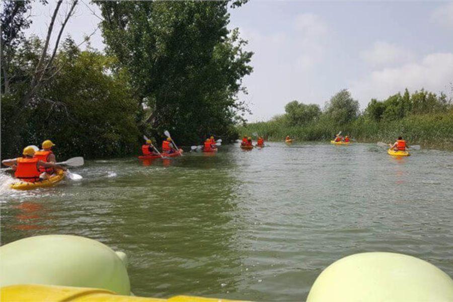 Kano Turu